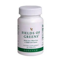 Fields of Greens, Зеленые ростки ячменя, 80 табл, Форевер США.
