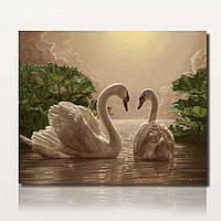 40x50cm Две красоты лебеди Картина DIY самостоятельной Handcrafted краски Kit Unframed Домашнее украшение