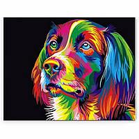 50x40см красочные щенка собака животное домашнее животное немного поделок самостоятельной ручной работы краски комплект домашнего декора к