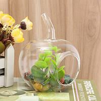 Стекло ваза для цветов террариум контейнер микро пейзаж стеклянные бутылки декор