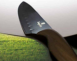 Набор ножей Berlinger Haus Forest Line BH-2286 - 6 пр, фото 4
