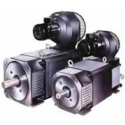 Электродвигатель MP160LL (55*1200/4000, 440/180)