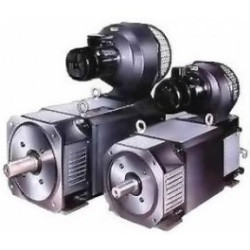 Электродвигатель MP160LM (45*2000/4000, 440/180)