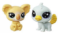Два зверька Platypus and Koala Маленький Зоомагазин, Littlest Pet Shop (C3010 (B9389))