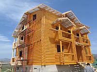 Строительство деревянного отеля, гостевых домов