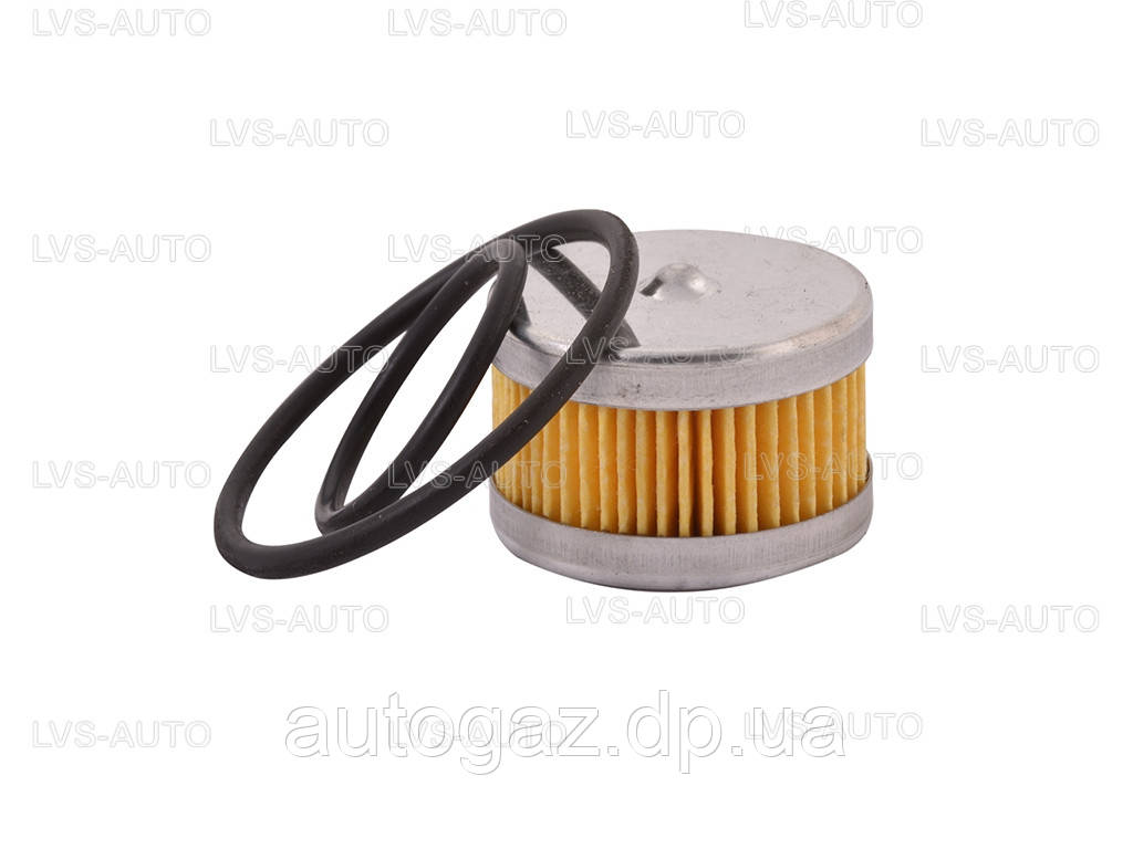 10-1 фильтр в редуктор Tomasetto с 2 резинками (шт.)
