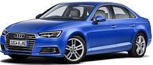 Защита двигателя Audi A-4 B9 (c 2015--)