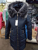 Женская молодежная куртка длинная , зимняя синего цвета