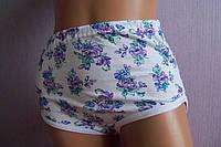 Трусики хлопковые женские фиолетовые пионы  на белом 50 размер