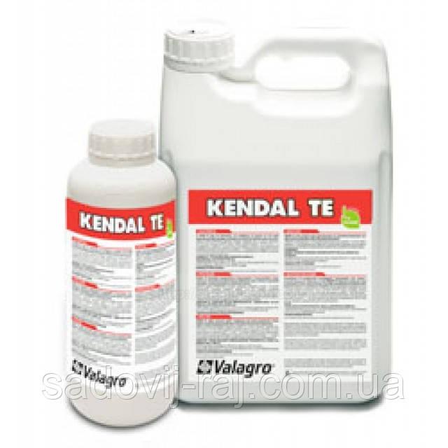 Біостимулятор КЕНДАЛ ТІ / Kendal ТІ, 5 л Valagro