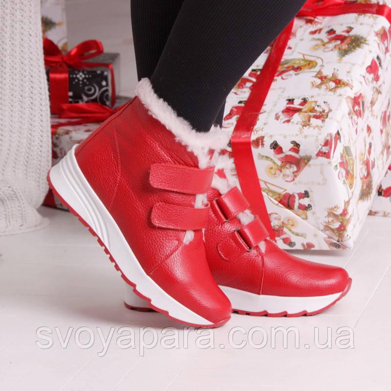 Женские зимние кожаные красные ботинки с застежками липучками на термополиэстеровой подошве с белой опушкой