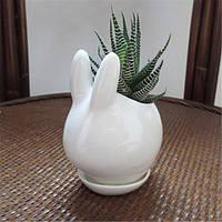 Мини-кролик керамический сочный цветочный горшок сада фарфора блюдце декора сеялка