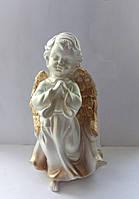 Ангел Дева