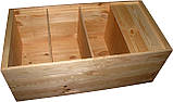 Нуклеусный улей на 24 рамки, фото 2