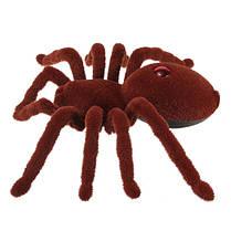Cute Sunlight 11 2CH Realistic RC Spider Дистанционное Управление Scary Toy Prank Gift Модель Хэллоуин Prop, фото 2