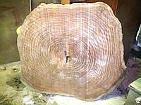 Мебель из массива Продам срез красного дерева 1690*1500*100 (вес 140 кг.) г. Киев, метро Лесная