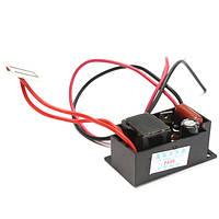 AC 110V 500mg / hr Генератор озона Керамический DIY Аксессуары для очистки воздуха