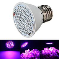 60 LED растет светлый крытый красный + синий гидропоники растения Вег лампы E27 4w