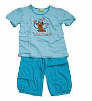 Пижама CORNETTE SD-730 SCOOBY-DOO BUTTERFLIES, размеры 110-116,122-128,134-140 хлопок, Польша