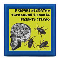 Рамка-шутка В случае нехватки тараканов разбить стекло