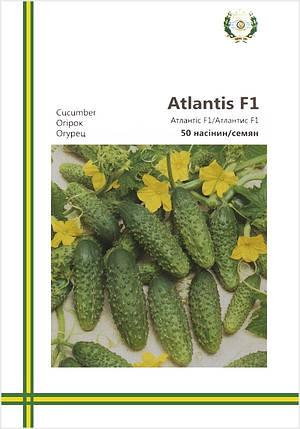 Семена огурцов Атлантис F1 50 шт ИС мет.уп., фото 2