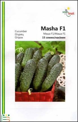 Семена огурцов Маша F1 15 шт ИС мет.уп., фото 2
