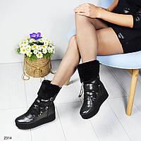 Сапожки женские с декоративной шнуровкой , цвет-черный перламутр