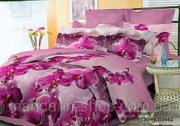 Простыня Поликоттон, расцветки в ассортименте (Двуспальный)