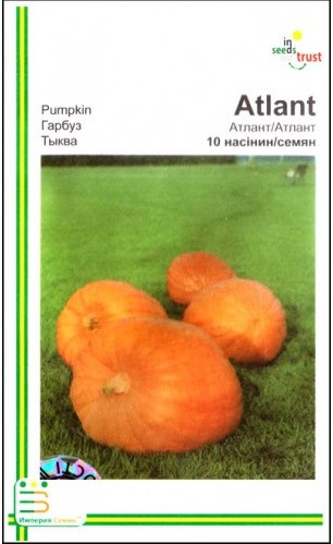 Семена тыквы Атлант 10 шт ИС мет.уп.