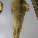 Воротник капюшон лиса готовый крой 30смх90см , фото 6