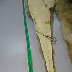 Воротник капюшон лиса готовый крой 30смх90см , фото 4
