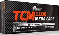 Креатин Olimp Labs TCM Mega Caps 1100 (120 кап) (103151) Фірмовий товар!