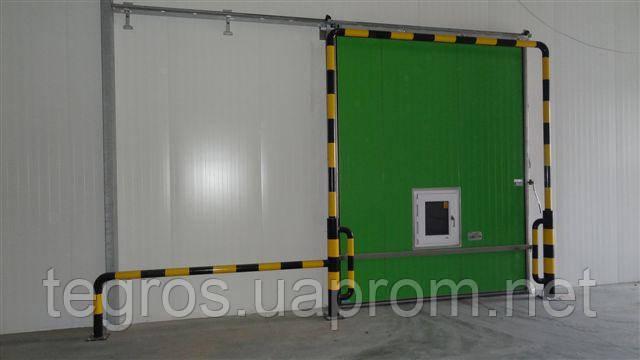 Холодильная дверь для камеры хранения  яблок ( РГС) .