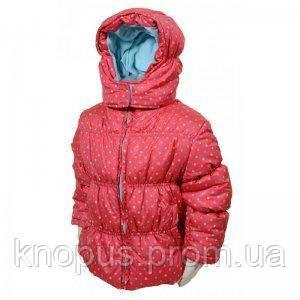 """Демисезонная курточка """"Розовые горошки"""",  PIDILIDI линейка BUGGA, размеры 92-104"""