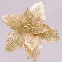 Рождественник (Пуансетия) 75308