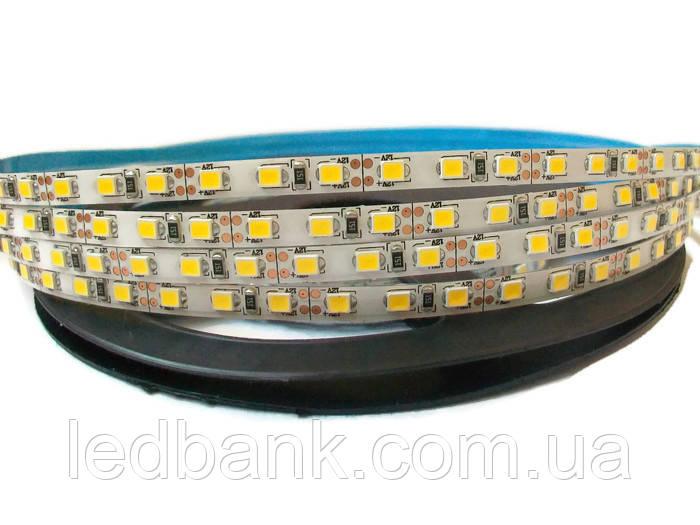 Светодиодная лента 5мм SMD 2835 120 LED/m IP20 9000K Холодный Белый