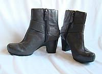 Сапоги женские демисезонные кожаные черные полусапожки Clarks (размер 37)