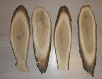 Срез дерева. Дуб 45 - 49 см (4 штуки), фото 1