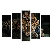 "Модульнаякартина из 5-х частей""Леопард на черном"""