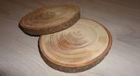 Срез дерева. Лиственница (модрина) 6 - 8 см
