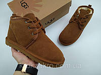 Ботинки мужские UGG  Neumel replica AAA 45-28 см