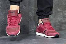 Мужские кроссовки Lacoste замшевые бордовые 45р, фото 2