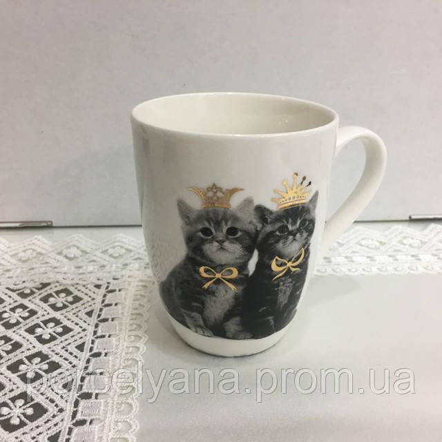 Кружка с котиками