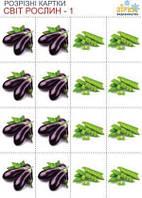 РК Овощи