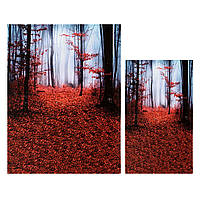 Silk Dawn Mangrove Forest Photo Booth Background Обои для рабочего стола