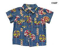 """Рубашка """"Леденцы"""" для мальчика. 110, 120, 130 см"""