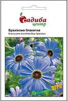 """Семена брахикомы """"Голубая"""", 0,1 г, """"Садиба  Центр"""",  Украина"""