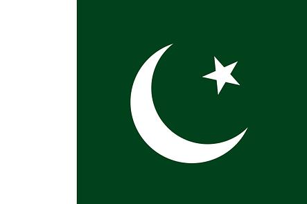 Флаг Пакистана (Аппликация) - (1м*1.5м), фото 2