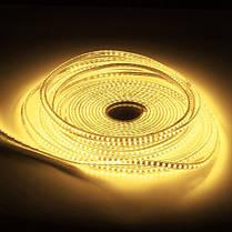 10М SMD3014 Водонепроницаемый LED Rope лампы Party Главная Рождество Indoor / Outdoor Strip Light 220 -1TopShop, фото 2