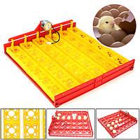 144/36 куриные яйца Инкубатор Automatic Duck перепела Птица домашняя птица яйца Инкубатор Tray